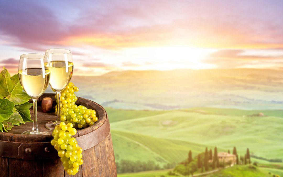 Electronic engineers help wine growers to vintage success